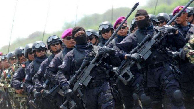 VIVA Militer : Pasukan Marinir TNI AL