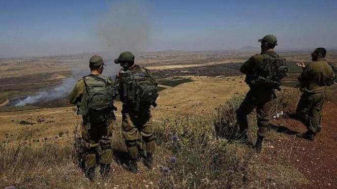 VIVA Militer: Tentara Pertahanan Israel (IDF)