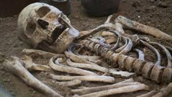 Tulang atau kerangka manusia.