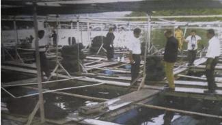 Suasana keramba jaring apung petani ikan kerapu.
