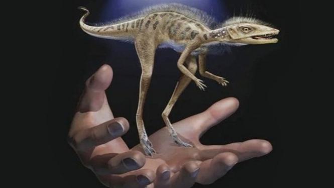Dinosaurus Mini