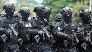 VIVA Militer: Pasukan Detasemen Jalamangkara (Denjaka) TNI Angkatan Laut (AL)