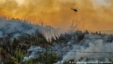https://thumb.viva.co.id/media/frontend/thumbs3/2020/07/16/5f1036962a654-siberia-alami-fenomena-iklim-baru-dipicu-dampak-aktivitas-manusia_375_211.jpg