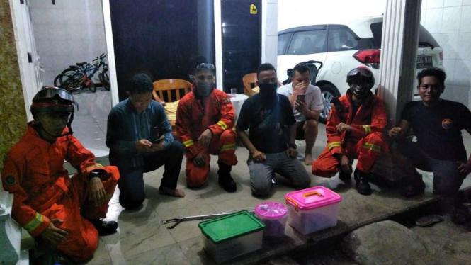 Warga dan Damkar Jakarta Barat menangkap ular kobra