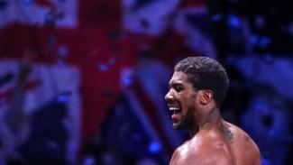 Juara tinju dunia kelas berat, Anthony Joshua