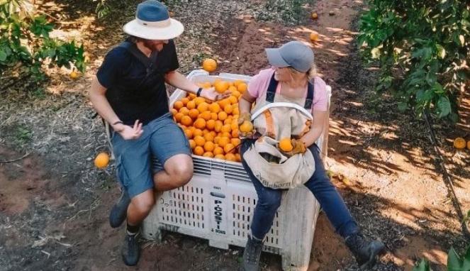 https://thumb.viva.co.id/media/frontend/thumbs3/2020/08/11/5f32402dcde0c-serikat-buruh-australia-minta-penghapusan-working-holiday-visa-ini-alasannya_663_382.jpg