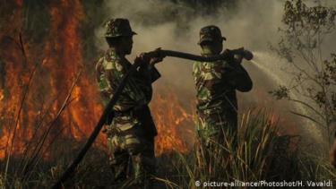 https://thumb.viva.co.id/media/frontend/thumbs3/2020/09/16/5f61b0af26f8d-bencana-ganda-yang-dihadapi-indonesia-karhutla-dan-covid-19_375_211.jpg