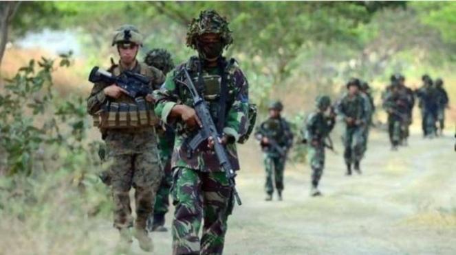 VIVA Militer : Pasukan TNI sisir kelompok bersenjata OPM di Papua (ilustrasi)