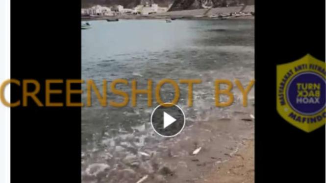 Tangkapan layar (screen shot) sebuah akun Facebook yang mengunggah foto pantai dengan penampakan ribuan ikan terdampar yang diklaim terjadi di pantai Gaza, Palestina.