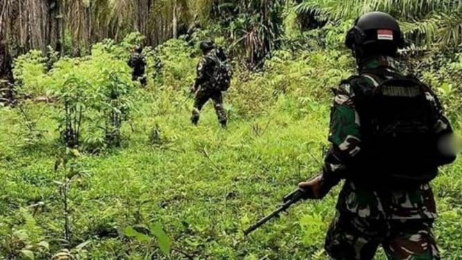 VIVA Militer: Prajurit Raider TNI di hutan Papua.