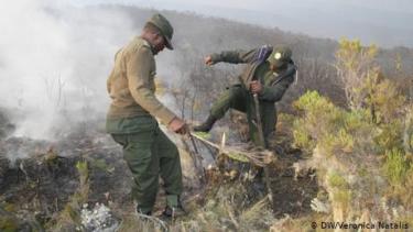https://thumb.viva.co.id/media/frontend/thumbs3/2020/10/16/5f89345a2bb7d-gunung-kilimanjaro-dilanda-kebakaran-pendaki-asing-dievakuasi_375_211.jpg