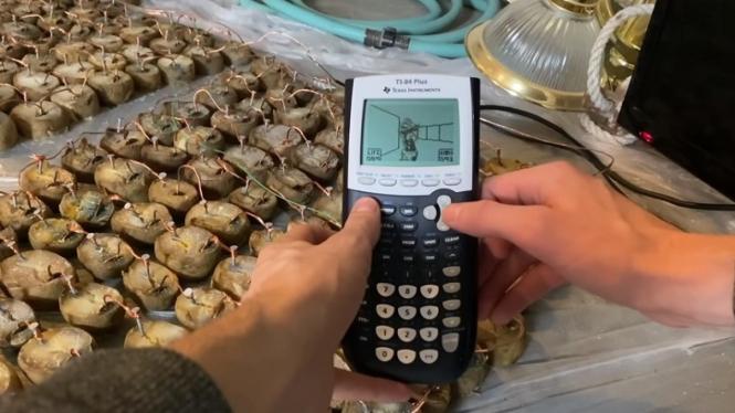 Seorang YouTuber Bermain Doom Di Kalkulator Bertenaga 100 Kentang