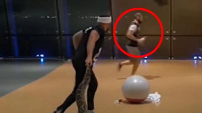 Khabib Nurmagomedov ketakutan lari melihat ular piton besar.
