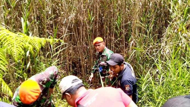 VIVA Militer: Letnan Satu Febrianto Tri Sulaksono saat temukan ladang ganja.
