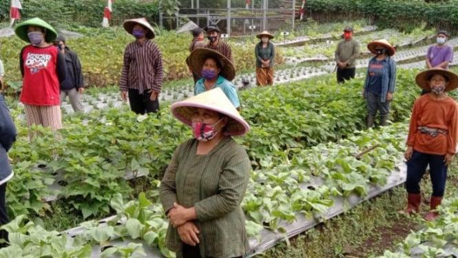 Petani terapkan protokol kesehatan dengarkan penjelasan KPU Purbalingga (antara)