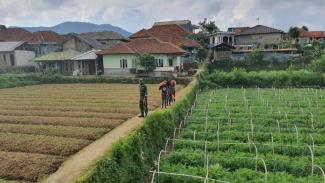 VIVA Militer: Prajurit Kopassus TNI bergerak di kaki Gunung Gede Pangrango.
