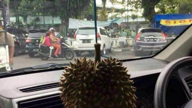 Buah durian jadi pengharum mobil