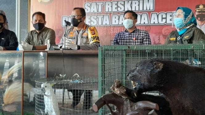 Polisi menunjukkan barang bukti hewan langka dari rumah bandar sabu di Banda Aceh.