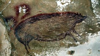 Lukisan gua tertua di dunia ditemukan di Indonesia