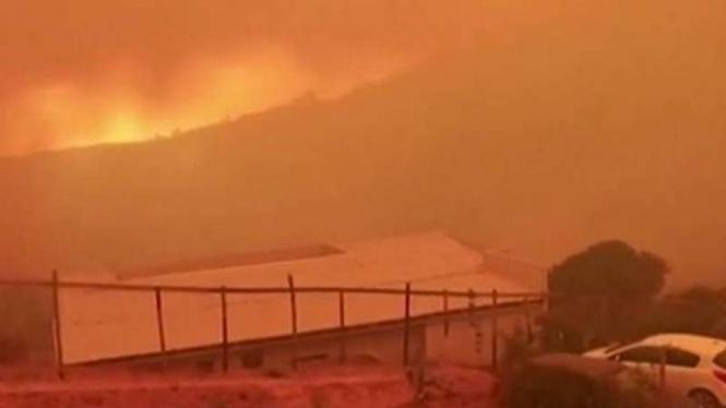 Penampakan Kebakaran Hutan di Chili, Langit Jadi Merah