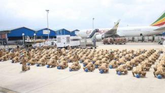 VIVA Militer: 186 Satgas TNI Konga UNIFIL sujud syukur tiba dari Lebanon
