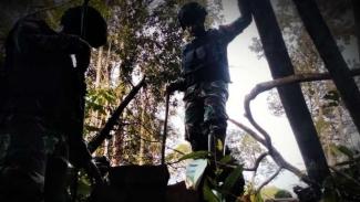 VIVA Militer: Batalyon Infanteri 407/Padma Kusuma di hutan Kalimantan.