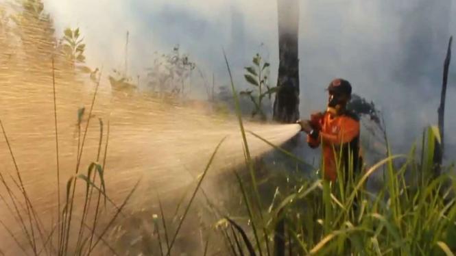 Petugas memadamkan kebakaran lahan di Riau.