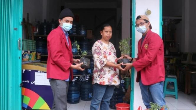Pembagian tanaman dapur kepada warga sekitar kantor Desa Tegalgondo oleh kelompok 54 PMM UMM.