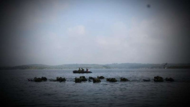 VIVA Militer: Pasukan Yonif MR 411/Pandawa Kostrad latihan infiltrasi laut