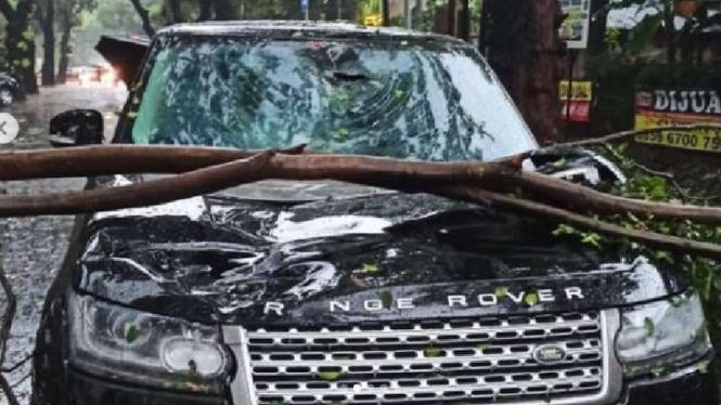 Range Rover hancur ditimpa pohon tumbang di Jaksel