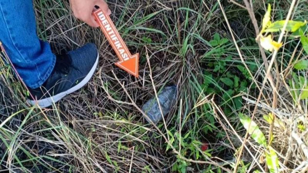 Proses identifikasi video mesum oleh WNA yang vira, di area Gunung Batur, Bali