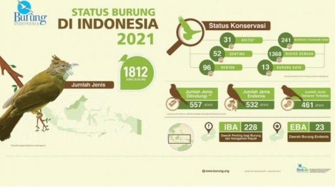 Burung di Indonesia
