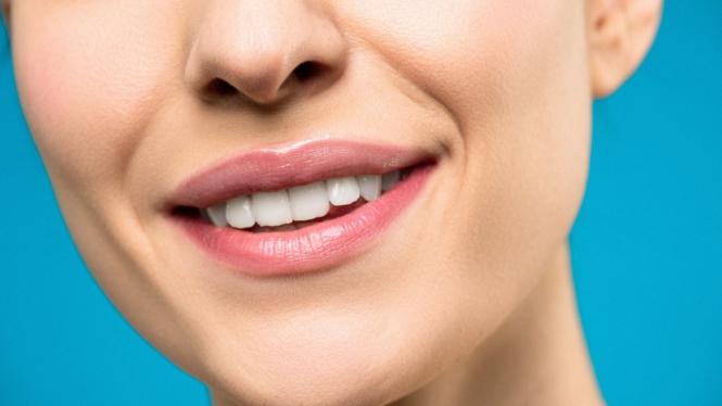Ilustrasi hidung/bibir.