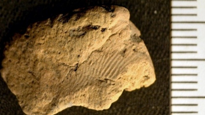 Sidik Jari Usia 5.000 Tahun