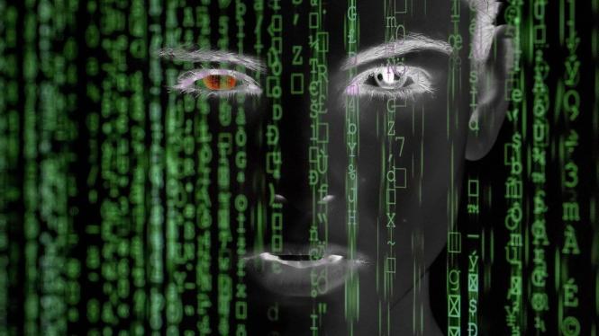 Hacker / serangan siber.