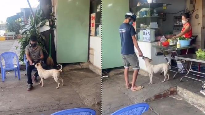 Viral warung makan ini karena anjingnya (Instagram/makassar_iinfo)