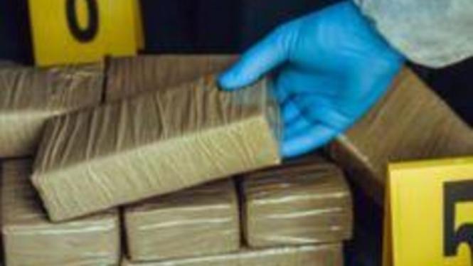 Ilustrasi paket kokain.
