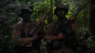 VIVA Militer: Prajurit Yonif Mekanis Raider 411/Pandawa di hutan Gunung Argopuro