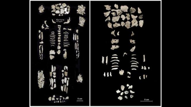 Jenazah perempuan elit (kiri) dan janin kembar (kanan) saat dikremasi, tapi tidak terbakar seluruhnya.