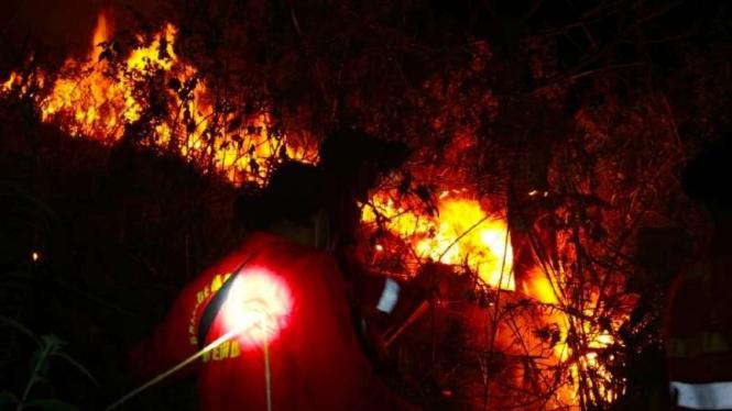 Kebakaran hutan di sekitar danau Toba.