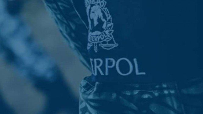 Interpol (ilustrasi)