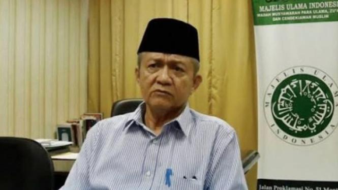 Wakil Ketua Majelis Ulama Indonesia (MUI) KH Anwar Abbas (Instagram/smart.gram)