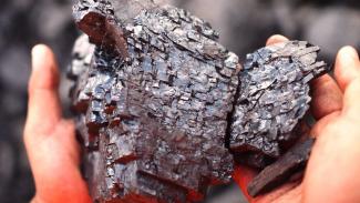 Batu Bara dari site BUMI, PT Kaltim Prima Coal, Sangatta, Kalimantan Timur.