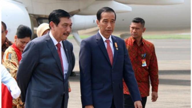 Luhut dan Jokowi (VIVA)