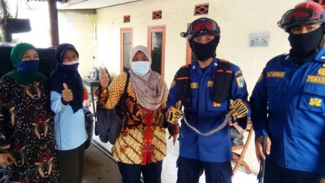Petugas damkar evakuasi ular kobra dari rumah warga di Cilincing.