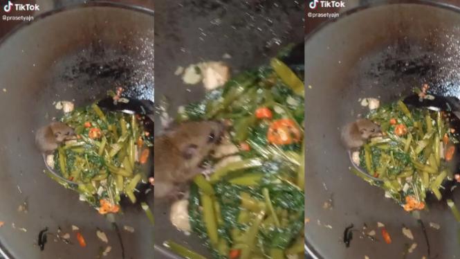 Jijik, Masakan Tumis Kangkung Ini Ada Tikus (TikTok/prasetyajn)