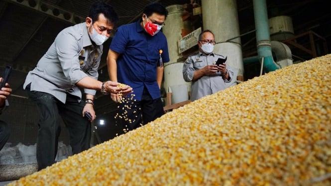 Menteri Pertanian, Syahrul Yasin Limpo, berkunjung ke pabrik pakan ternak (27/9)