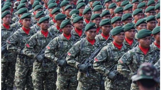 Ilustrasi TNI Tidak ada Hijau dan Merah Putih