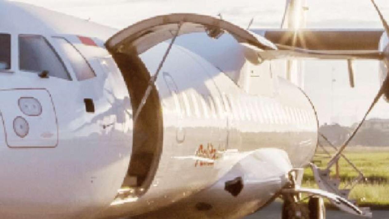 Ilustrasi pesawat Pelita Air Service.